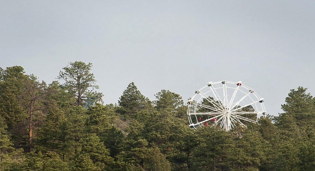 ferris wheel above pine and spruce trees with gray skies