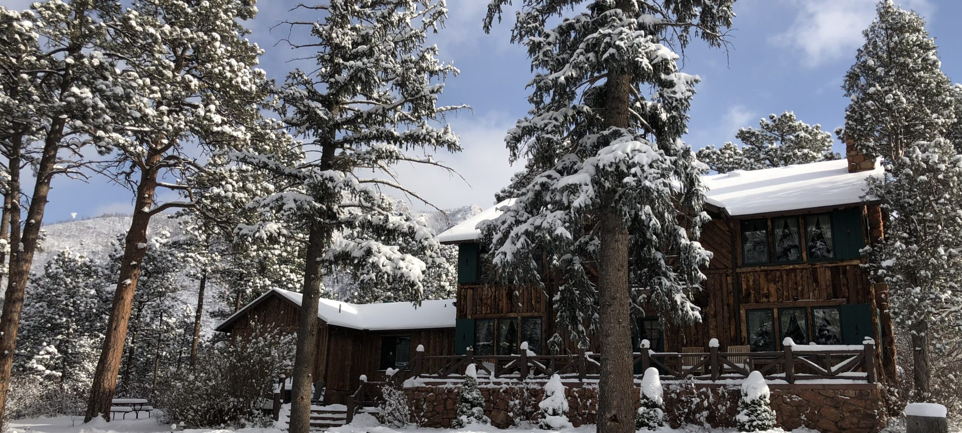 log lodge style home with pine trees and snow and blue and cloudy skies
