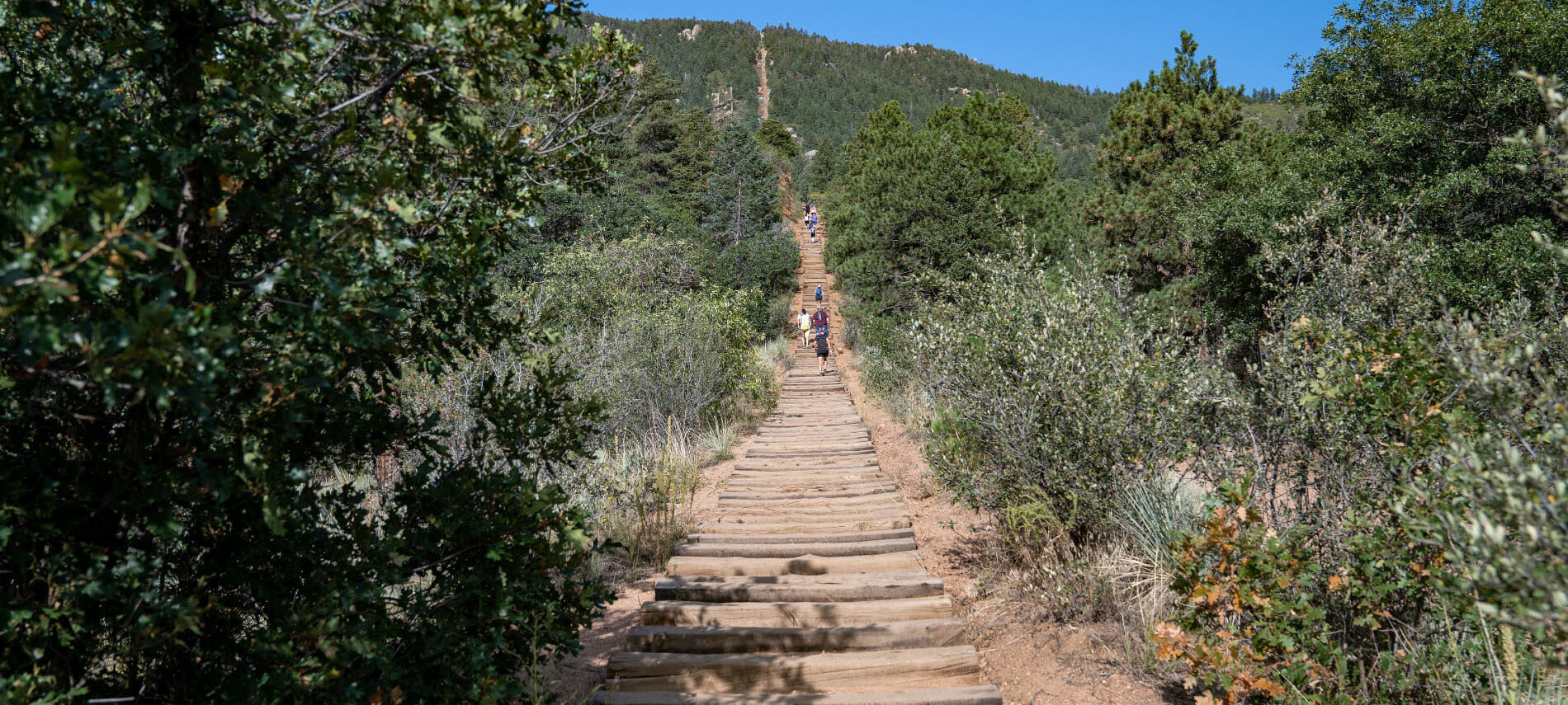 The Manitou Springs Incine