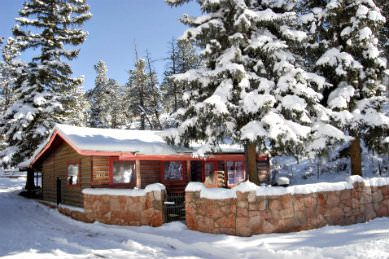 ourside of one story cabin with snow covering ground, large pine trees and stone wall