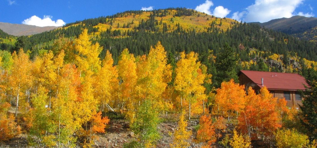 fall leaves in colorado 2018