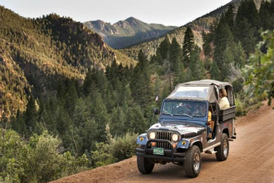 Soft-top jeep riding down a dirt road surrounded by green pine tree covered mountains