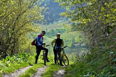 Two people standing near their bikes on a trail surrounded by lush green hills and trees