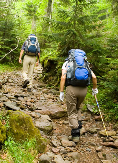 Two people with backpacks hiking up a steep, rocky trail surrounded by lush green trees