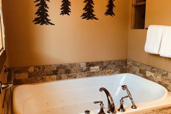 Nice bathtub setting with Chrome faucet and hand sprayer